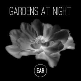 "EP ""Gardens At Night"" Release / ARTE"